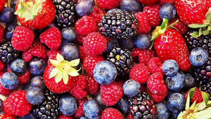 Arbuste à petits fruits