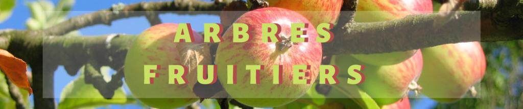 Arbre fruitiers