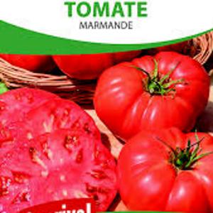 Graines tomate Marmande