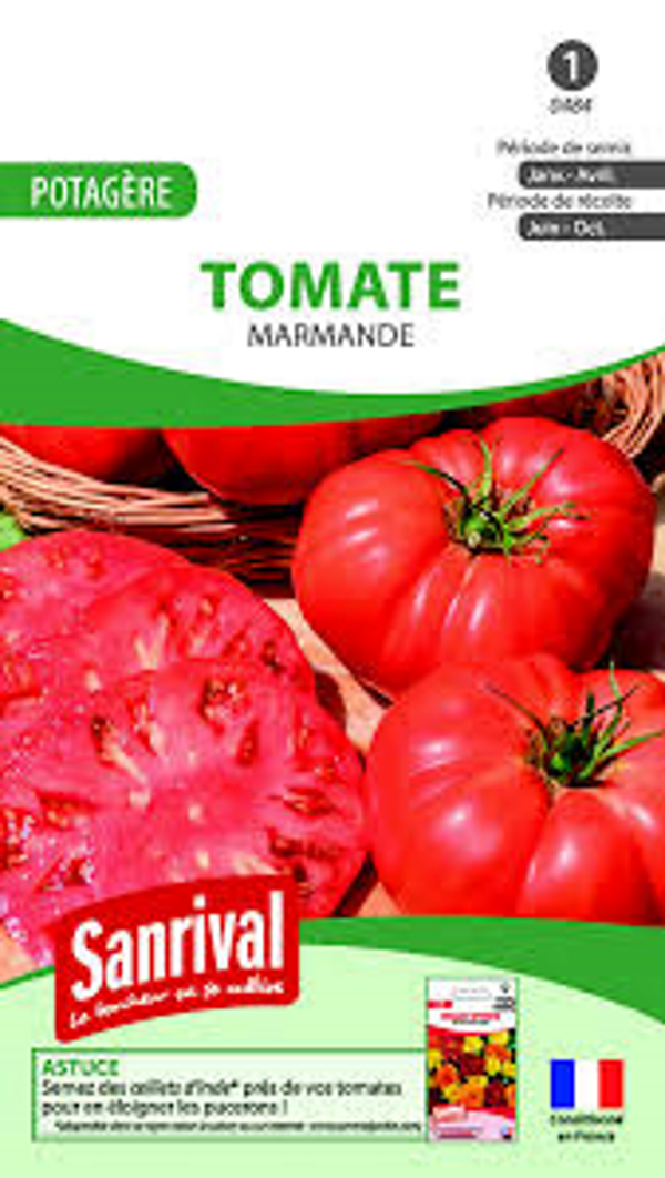 Graines tomate Marmande