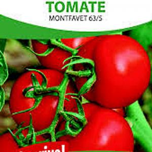 Graines, tomate Montfavet